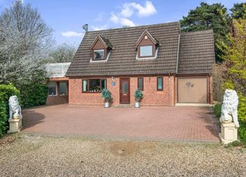 Thumbnail 4 bed bungalow for sale in Norwich, Norfolk