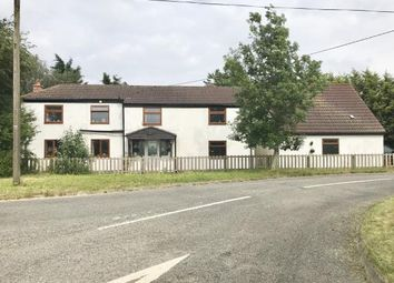 Thumbnail 4 bed detached house for sale in Rushy Drove, Hoffleet Stow, Bicker, Lincolnshire