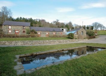 Thumbnail 6 bed detached house for sale in Porthyrhyd, Llanwrda