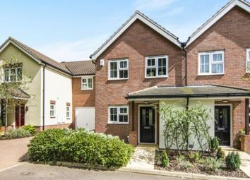 Thumbnail 3 bed semi-detached house for sale in Crossing Road, Epping, Essex