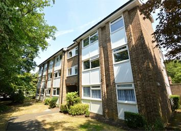 Thumbnail 1 bed detached house to rent in Castleview Road, Weybridge, Surrey