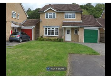Thumbnail 4 bed detached house to rent in Rosedale Avenue, Stonehouse