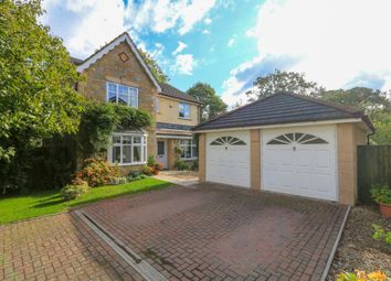 Thumbnail 4 bedroom detached house for sale in Waterstream Square, Chudleigh, Newton Abbot