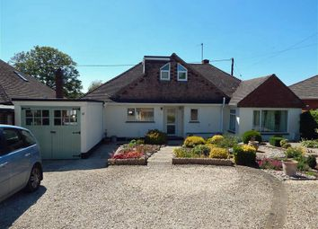 Thumbnail 5 bed bungalow to rent in Potters Way, Laverstock, Salisbury
