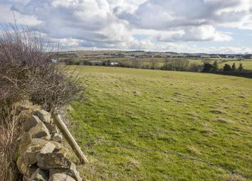 Thumbnail Land for sale in Butterknowle, Bishop Auckland, Co Durham