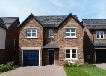 Thumbnail 4 bedroom detached house to rent in Maxwell Drive, Carlisle, (Crindledyke Farm)