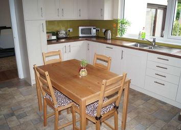 Thumbnail 4 bedroom detached house to rent in Brunswick Place, Aberdeen