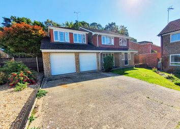 Stoneleigh Court, Frimley, Camberley GU16. 5 bed detached house