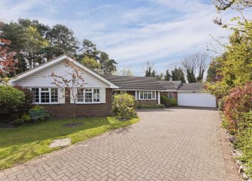 Thumbnail 3 bedroom detached house for sale in Hurstwood, Ascot