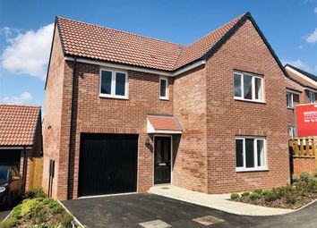 Thumbnail 4 bed property to rent in Hilton Close, Pleasley, Mansfield