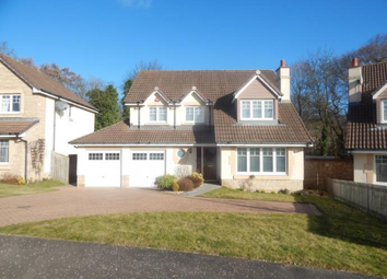 Thumbnail 4 bed detached house to rent in Oak Loan, Baldovie Broughty Ferry Dundee