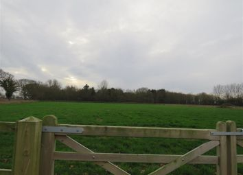 Thumbnail Land for sale in Calthorpe Street, Ingham, Norwich
