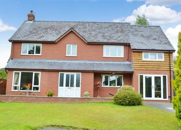 Thumbnail 3 bed detached house for sale in 1, Glanynant, Newtown, Newtown, Powys