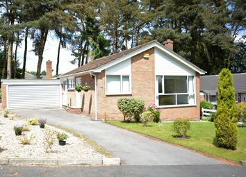 Thumbnail 4 bed bungalow to rent in The Paddock, Lanchester, Durham