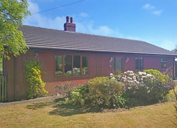 Thumbnail 3 bed bungalow for sale in Dolau, Llandrindod Wells