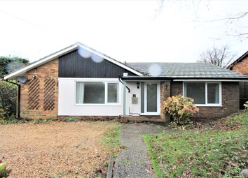 Thumbnail 3 bed detached bungalow to rent in Blackberry Lane, Four Marks, Alton, Hants