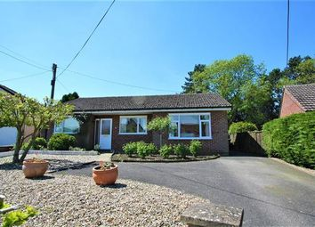 Thumbnail 3 bed bungalow for sale in High Street, Cheveley, Newmarket