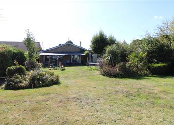 4 bed detached bungalow for sale in Amour, Heath Road, Fordham Heath, Colchester CO3