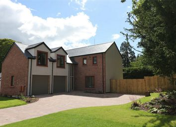 Thumbnail 4 bedroom detached house for sale in Squirrel Close, Yanwath, Penrith
