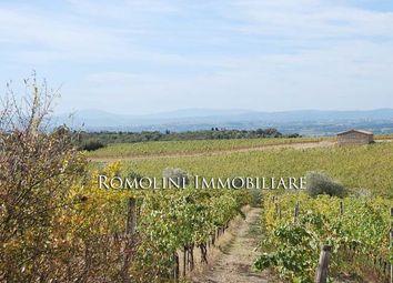 Thumbnail Land for sale in Castelnuovo Berardenga, Tuscany, Italy