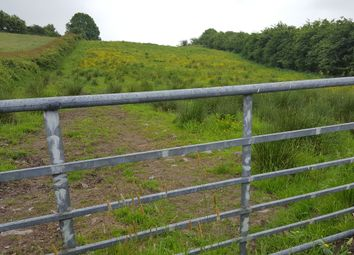 Thumbnail Property for sale in Logcurragh, Swinford, Mayo