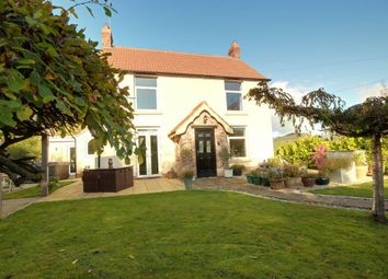 Thumbnail 4 bed detached house for sale in Canal Side West, Newport, Brough