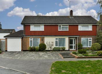 Thumbnail 5 bed detached house for sale in Daneshill, Redhill