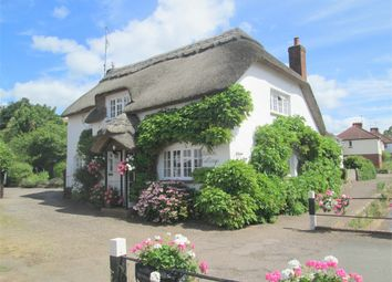 Thumbnail 3 bedroom cottage for sale in Otterton, Budleigh Salterton, Devon