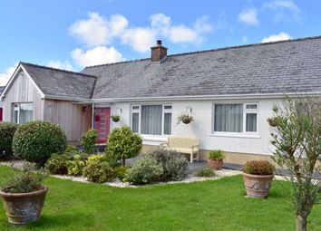 Thumbnail 4 bedroom detached bungalow for sale in Princes Gate, Narberth, Pembrokeshire