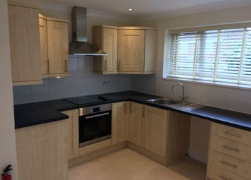 Thumbnail 3 bed terraced house to rent in Birch Road, Headley Down, Headley Down, Bordon, Hampshire