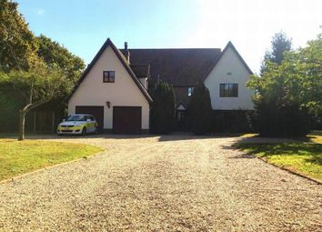 Thumbnail 5 bed detached house to rent in Wivenhoe Road, Crockleford Heath, Colchester