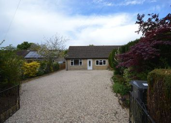 Thumbnail 3 bedroom semi-detached bungalow to rent in Watergore, South Petherton
