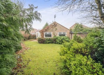 Thumbnail 2 bed bungalow for sale in Thistle Avenue, Crawcrook, Ryton
