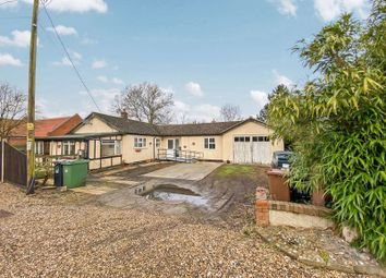 Thumbnail 4 bed detached bungalow for sale in The Street, Sutton, Norwich