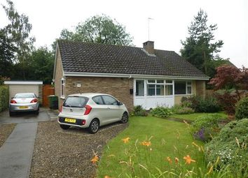Thumbnail 2 bed detached bungalow for sale in The Coppice, Bishopthorpe, York