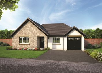 Thumbnail 3 bedroom detached bungalow for sale in Plot 4, The Yewdale, Blenkett View