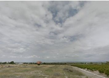 Thumbnail Land for sale in La Marina, La Marina, Spain