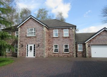 Thumbnail 4 bed detached house for sale in The Birches, Clydach, Swansea.