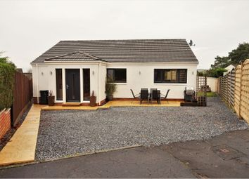 Thumbnail 4 bed detached bungalow for sale in Windsor Gardens, St. Andrews