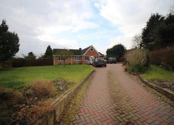 Thumbnail 6 bed bungalow for sale in Exhall, Alcester, Warwickshire