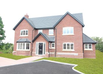Thumbnail 4 bed detached house for sale in 10 Stoneleigh Park, Acton Burnell, Shrewsbury