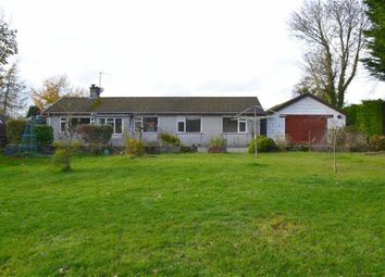 Thumbnail 4 bed detached bungalow for sale in Cilcennin, Lampeter, Ceredigion