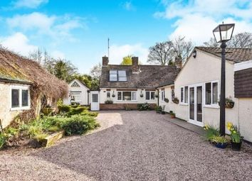 Thumbnail 5 bed bungalow for sale in Smithymoor, Stretton, Alfreton, Derbyshire