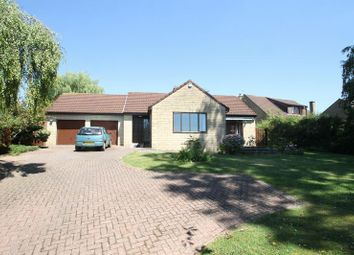 Thumbnail 4 bed detached bungalow to rent in Ash Lane, Wells