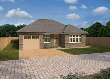 Thumbnail 2 bed detached bungalow for sale in Romansfield, Crediton Road, Okehampton