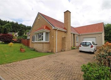 Thumbnail 3 bed detached bungalow for sale in Adair Place, Tillicoultry