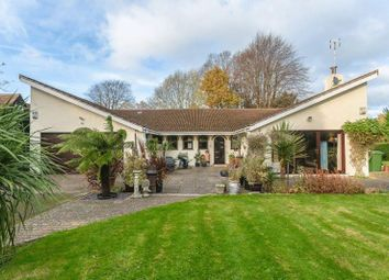 Thumbnail 3 bed detached bungalow for sale in Walpole Avenue, Chipstead, Coulsdon