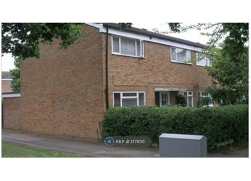 Thumbnail Room to rent in Ripon Road, Hertfordshire