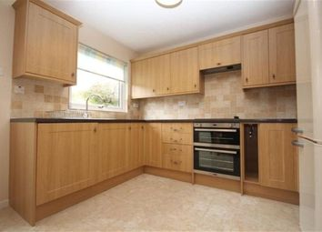 Thumbnail 4 bed property to rent in Bensham Grove, Thornton Heath, Surrey