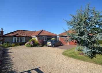 Thumbnail 4 bed detached bungalow for sale in Lower Road, Stalbridge, Sturminster Newton